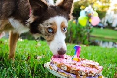 Lady eating cake II