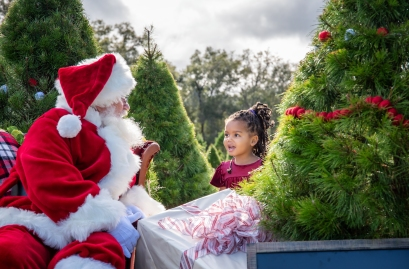 Roberts tree farm Thando with Santa II