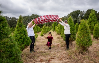 Roberts tree farm trio blanket II